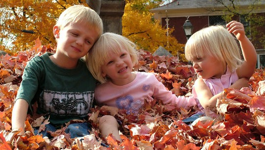 Fun Ideas for the Family During Autumn