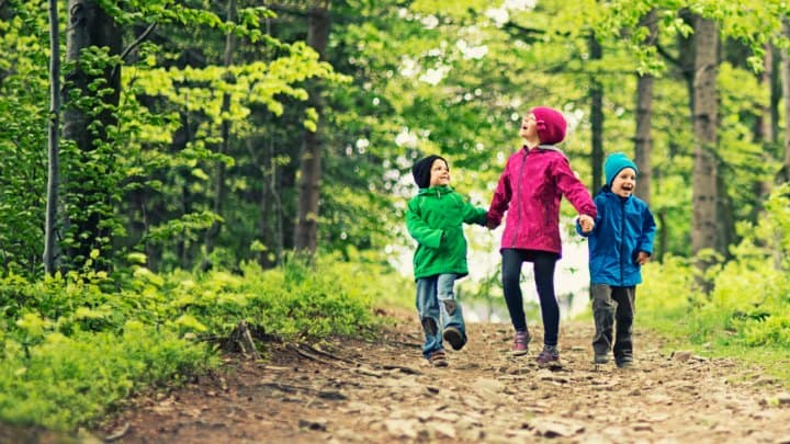 Go Take a Hike! Lessons from Adventures in Nature