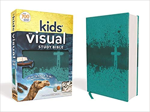Kids Visual Bible NIV edition